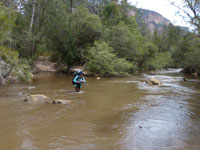 Dorine on the 1st Wolgan River crossing