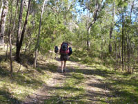 Heading for Newnes